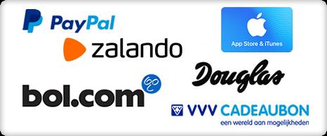 De beloningen die jij kunt verdienen - online betaalde enquêtes